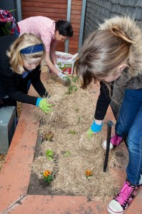 Summer gardening activities for children