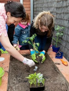 How do you feel about gardening with kids?