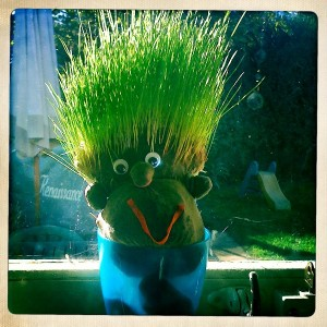 Grass heads for children to make