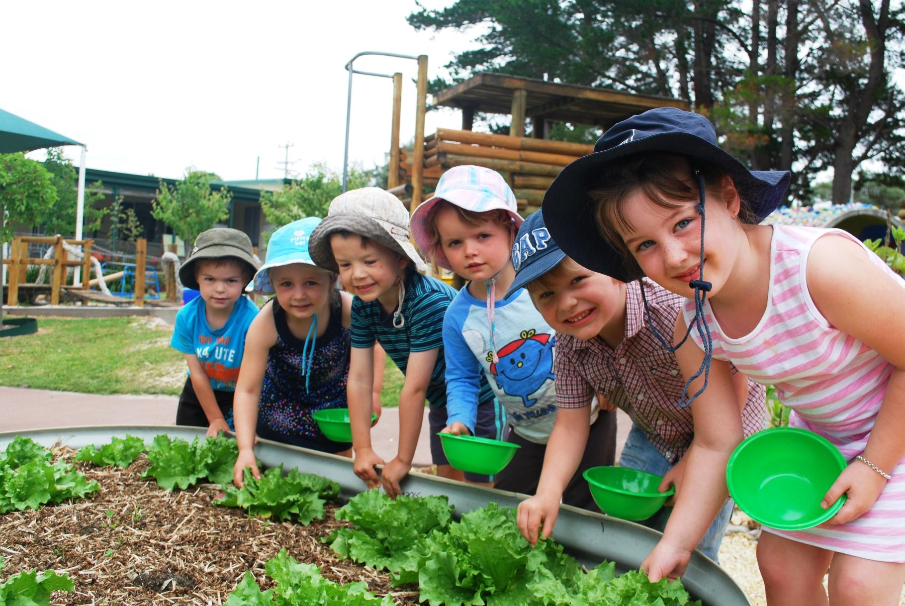 The Coles Junior Landcare Garden Grants program is offering