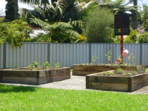 The Laneway Park raised garden beds