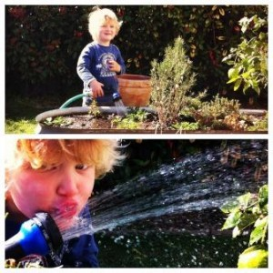 Watering the garden is a task kids love