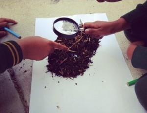 school garden compost for kids