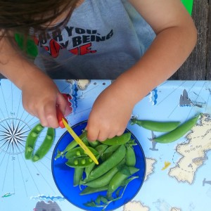 Choppping snow peas