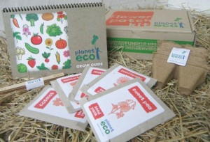 Planet-eco flower patch kit