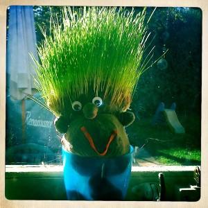 Grass heads for children to make