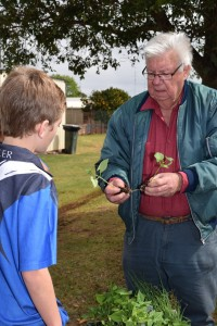 Junior Landcare's Greg Grimes and a student from Martin Luther Primary School