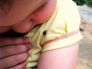 Kids and ladybugs