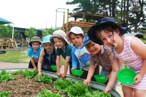 Lower King Community Kindergarten WA