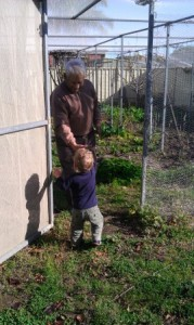 Intergenerational gardening is great for all ages
