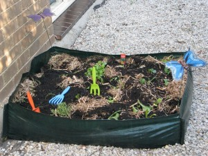 Plant seedlings in the no-dig garden kids will enjoy