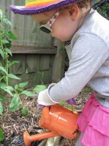 Stay safe in the garden this summer