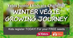Winter vegie growing challenge