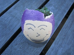 Making Cress Egg Heads is Fun for Kids