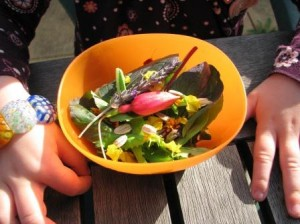 marigolds, sunflower seeds and lavendar are great in salads
