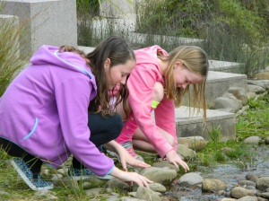 girls looking in creek at cranbourne bot gardens