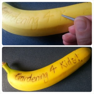 Message on a Banana