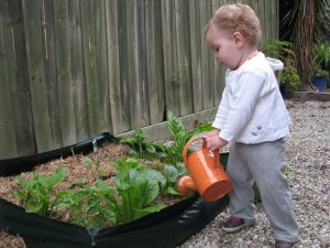 No-dig gardens are great for kids